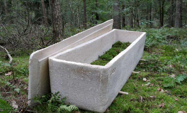 """Ecologie : il est désormais possible se faire enterrer dans un """"cercueil vivant"""""""