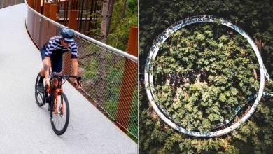 Belgique : Ce pont circulaire et suspendu permet de faire du vélo en pleine forêt