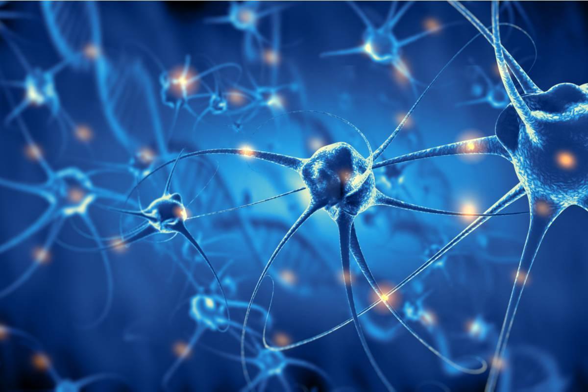 Des chercheurs ont découvert des différences singulières dans les neurones des personnes atteintes de schizophrénie - NeozOne
